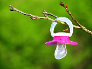 pink pacifier hanging on tree branch